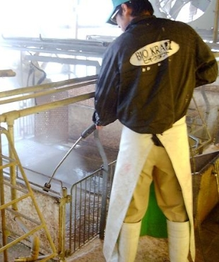 畜舎の洗浄