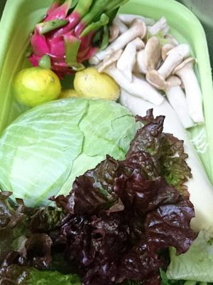 野菜洗いにオキシリンクを使っています