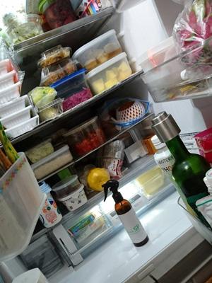 冷蔵庫の臭い消しに愛用しています